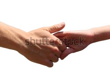 Hand in a hand Stock photo © Pakhnyushchyy