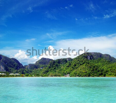 Kayalar deniz krabi yaz okyanus mavi Stok fotoğraf © Pakhnyushchyy