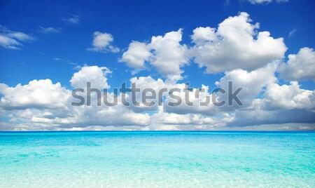 Сток-фото: тропический · пляж · пальмами · синий · небе · воды
