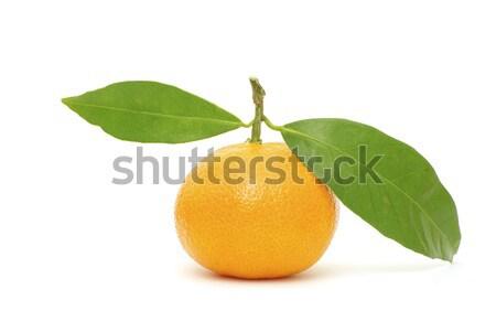 Mandarijn geïsoleerd witte voedsel natuur oranje Stockfoto © Pakhnyushchyy