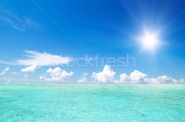 Kayalar deniz krabi su manzara okyanus Stok fotoğraf © Pakhnyushchyy