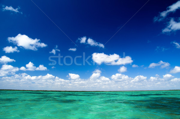 Caribbean deniz mükemmel gökyüzü plaj su Stok fotoğraf © Pakhnyushchyy