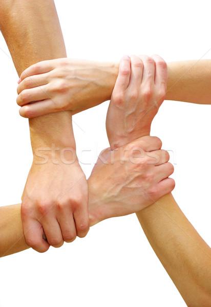 Ręce biały zespołowej przyjaźni strony sieci Zdjęcia stock © Pakhnyushchyy
