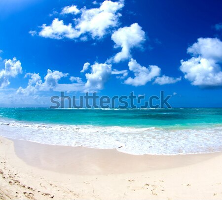 Mar playa vacaciones turismo agua naturaleza Foto stock © Pakhnyushchyy