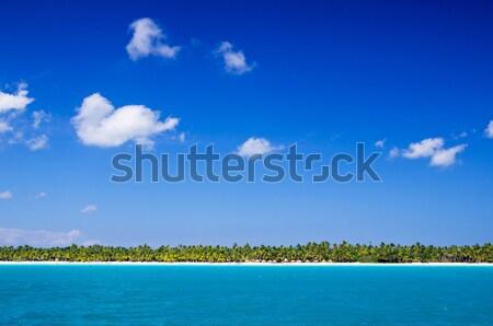 tropical sea Stock photo © Pakhnyushchyy