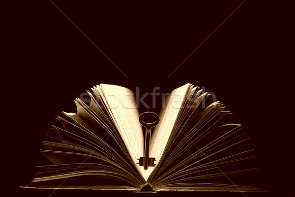 Key and book Stock photo © Pakhnyushchyy