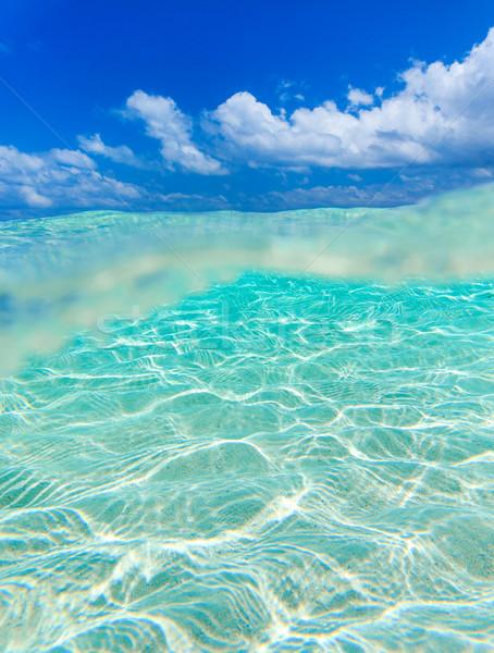 Nyugalmas vízalatti jelenet copy space víz tenger Stock fotó © Pakhnyushchyy