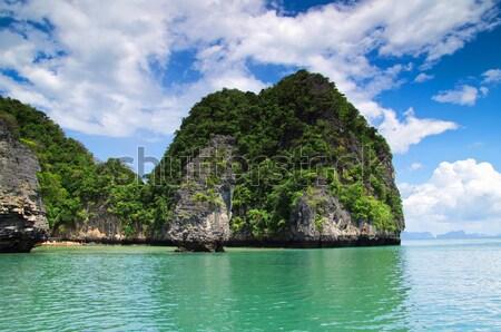 Kayalar deniz krabi ağaç çim güzellik Stok fotoğraf © Pakhnyushchyy