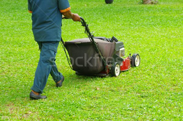 mowing the lawn Stock photo © Pakhnyushchyy