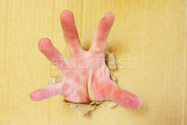 hand  Stock photo © Pakhnyushchyy