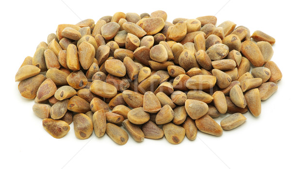 cedar nuts  Stock photo © Pakhnyushchyy