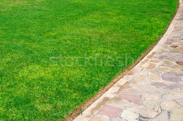 grass Stock photo © Pakhnyushchyy