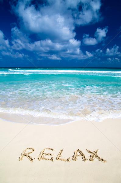 Relax on beach   Stock photo © Pakhnyushchyy