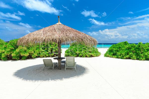 Plaj tropikal plaj az palmiye ağaçları mavi su Stok fotoğraf © Pakhnyushchyy