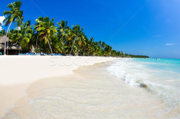 beach  Stock photo © Pakhnyushchyy
