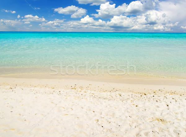 Mer belle plage tropicales eau fond Photo stock © Pakhnyushchyy