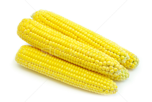 maize Stock photo © Pakhnyushchyy