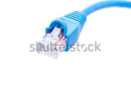 プラグイン 白 マクロ ショット ネットワーク 接続 ストックフォト © Pakhnyushchyy