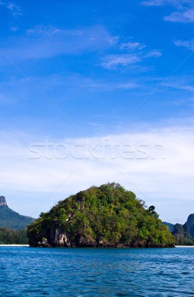 Doğa kayalar deniz krabi ağaç çim Stok fotoğraf © Pakhnyushchyy