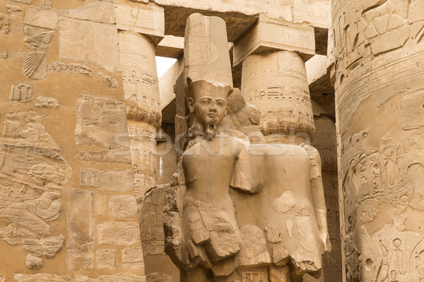columns covered in hieroglyphics, Karnak, Egypt. Stock photo © Pakhnyushchyy