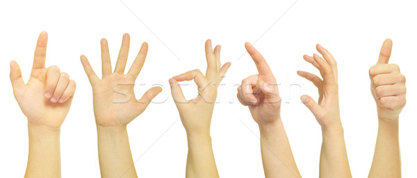 Mãos isolado branco mão palma espaço Foto stock © Pakhnyushchyy