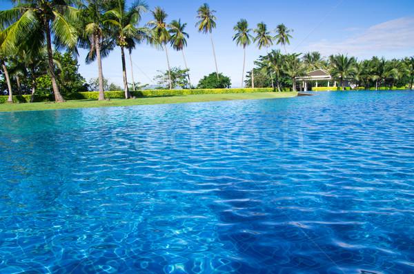 swimming pool  Stock photo © Pakhnyushchyy