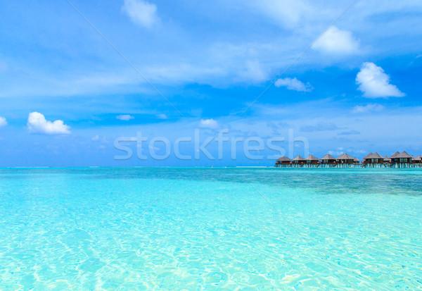 Plaj tropikal plaj az palmiye ağaçları mavi doğa Stok fotoğraf © Pakhnyushchyy