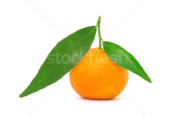 Stockfoto: Mandarijn- · geïsoleerd · witte · vruchten · oranje · leven