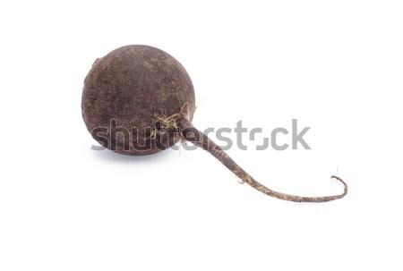 black radish  Stock photo © Pakhnyushchyy