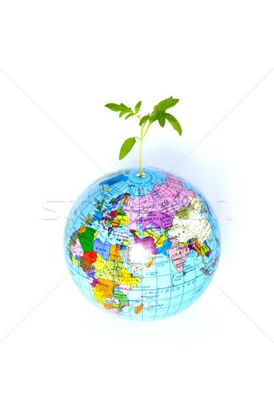 Wereldbol plant witte wereld Blauw vrede Stockfoto © Pakhnyushchyy