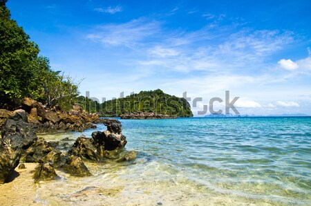 Deniz kayalar krabi ağaç çim doğa Stok fotoğraf © Pakhnyushchyy