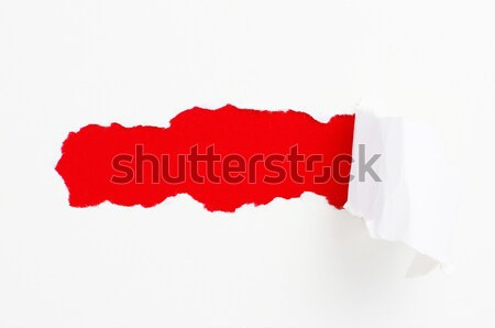 torn paper  Stock photo © Pakhnyushchyy