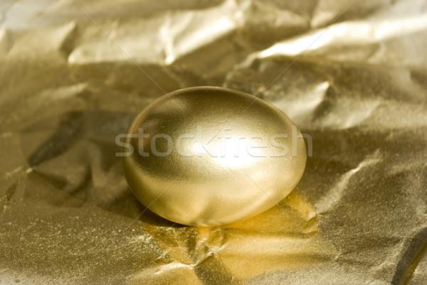 Jaj złote jajka odizolowany złoty działalności ceny Zdjęcia stock © Pakhnyushchyy