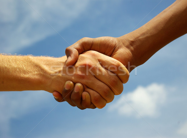 handshake Stock photo © Pakhnyushchyy