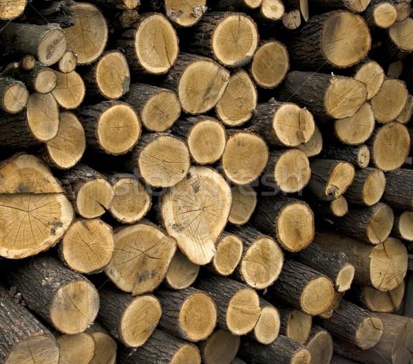 Drewno opałowe plan papieru ognia Zdjęcia stock © Pakhnyushchyy