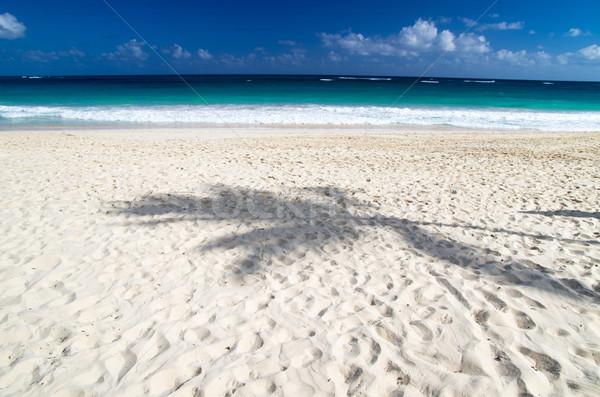 Stock photo: tropical sea