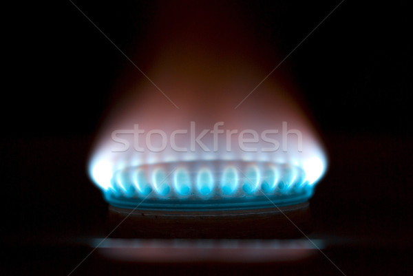 Blue flames of gas Stock photo © Pakhnyushchyy
