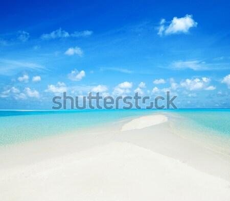 пляж тропический пляж пальмами синий природы Сток-фото © Pakhnyushchyy