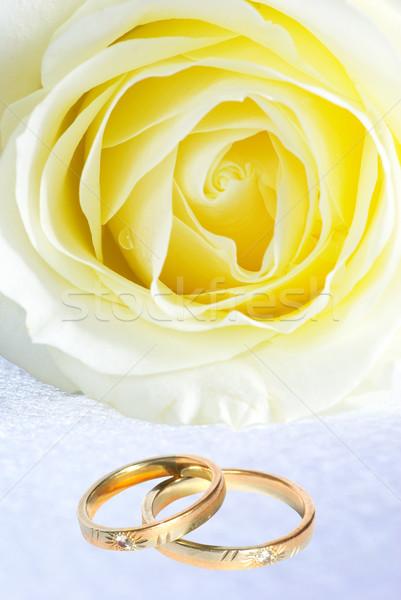 リング バラ 結婚指輪 グレー 花 結婚式 ストックフォト © Pakhnyushchyy