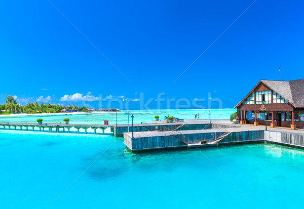 beach with water bungalows Maldives Stock photo © Pakhnyushchyy