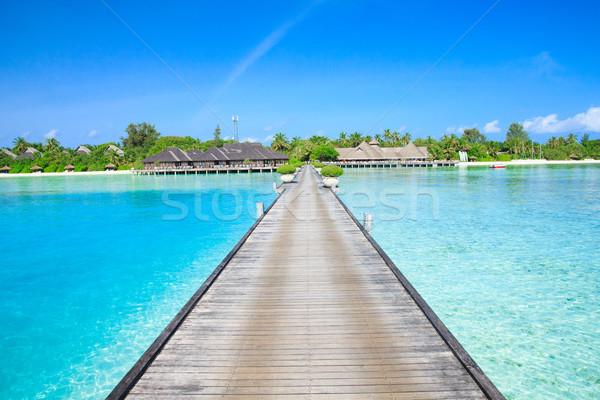 Plaj tropikal plaj az palmiye ağaçları mavi gökyüzü Stok fotoğraf © Pakhnyushchyy