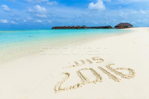 Plaży tropikalnej plaży palm niebieski charakter Zdjęcia stock © Pakhnyushchyy