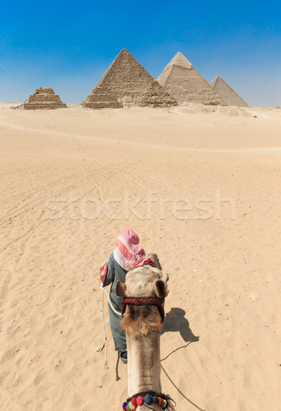 pyramids with a beautiful sky of Giza in Cairo, Egypt. Stock photo © Pakhnyushchyy