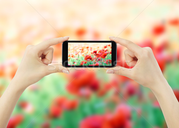woman taking photo with mobile cell phone Stock photo © Pakhnyushchyy