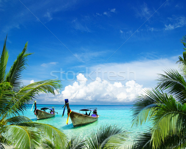 tropical sea Stock photo © Pakhnyushchyy