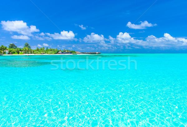 Trópusi tengerpart kevés pálmafák kék tengerpart természet Stock fotó © Pakhnyushchyy
