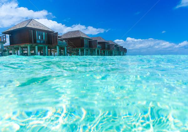 тропический пляж пальмами синий пляж воды Сток-фото © Pakhnyushchyy