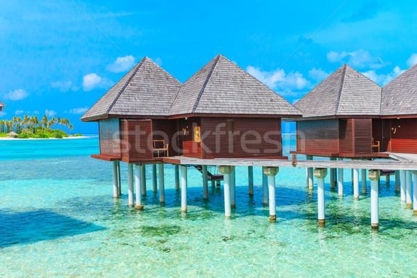Spiaggia spiaggia tropicale pochi palme blu panorama Foto d'archivio © Pakhnyushchyy
