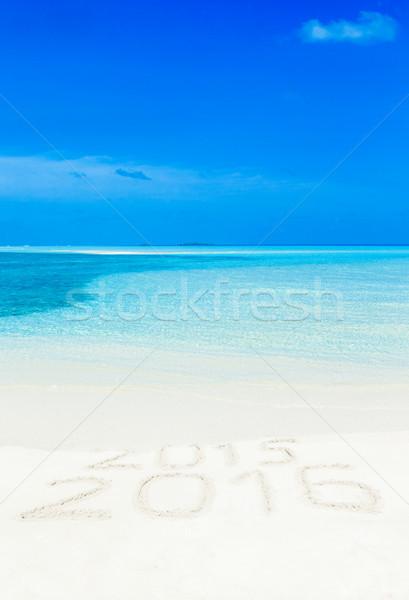 Strand tropisch strand weinig palmbomen Blauw hemel Stockfoto © Pakhnyushchyy