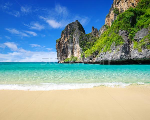 sand of beach  Stock photo © Pakhnyushchyy